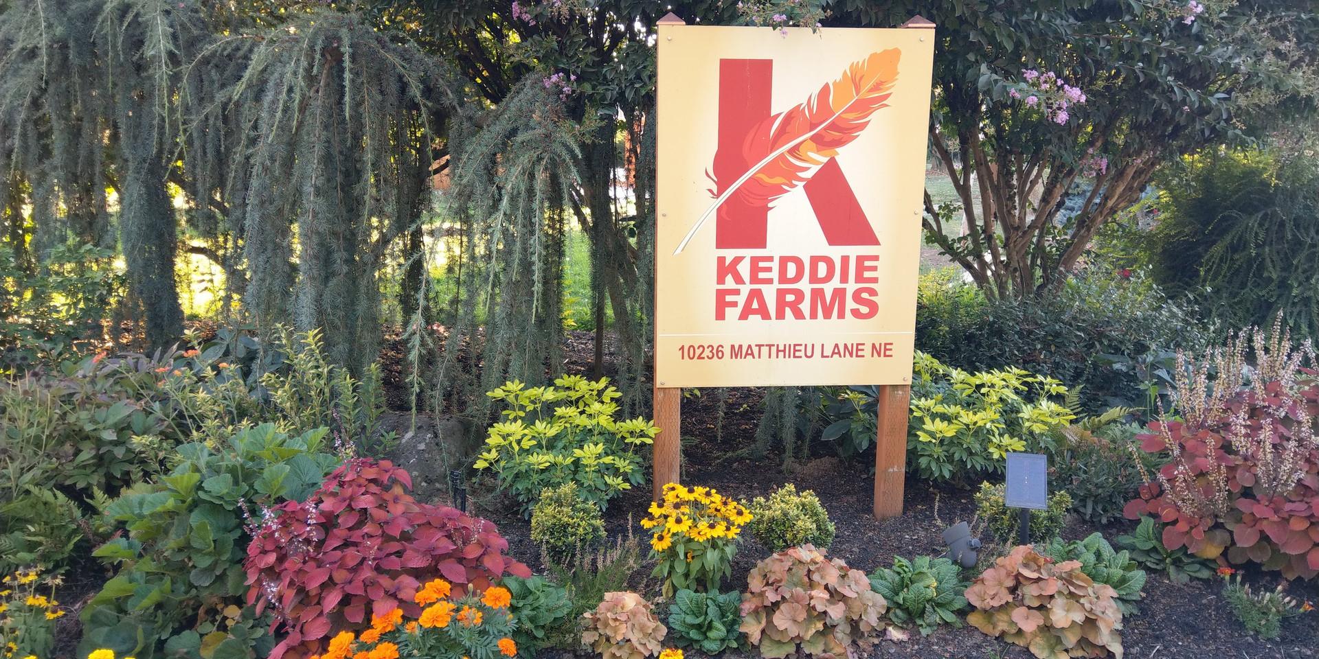 Keddie Farms