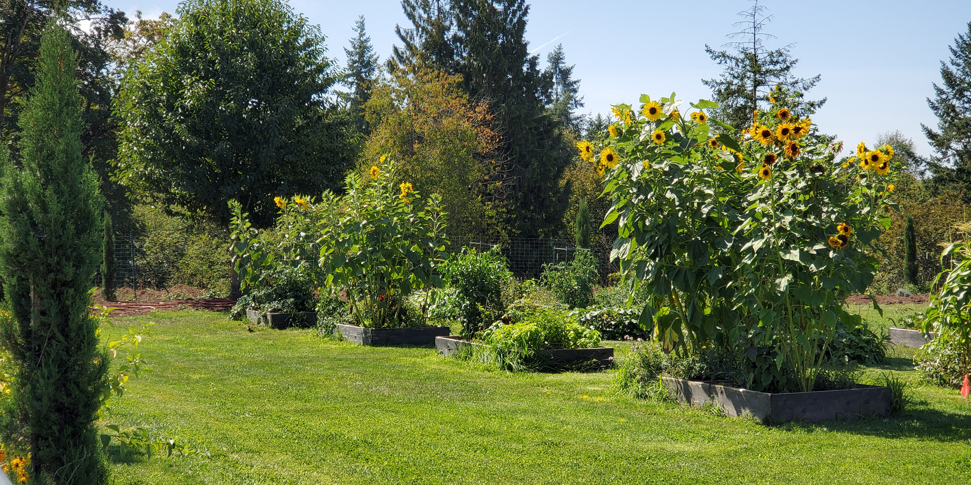 The Gardens at Keddie Farm