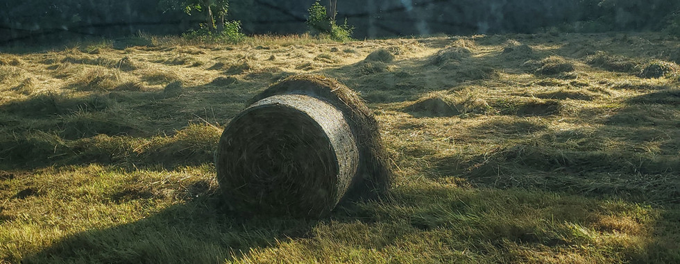 Baling Hay off the Meadow