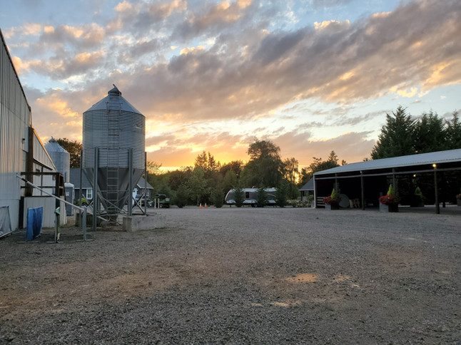 Keddie Farms at Sunset