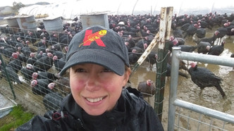 Lora with the Turkeys 2015