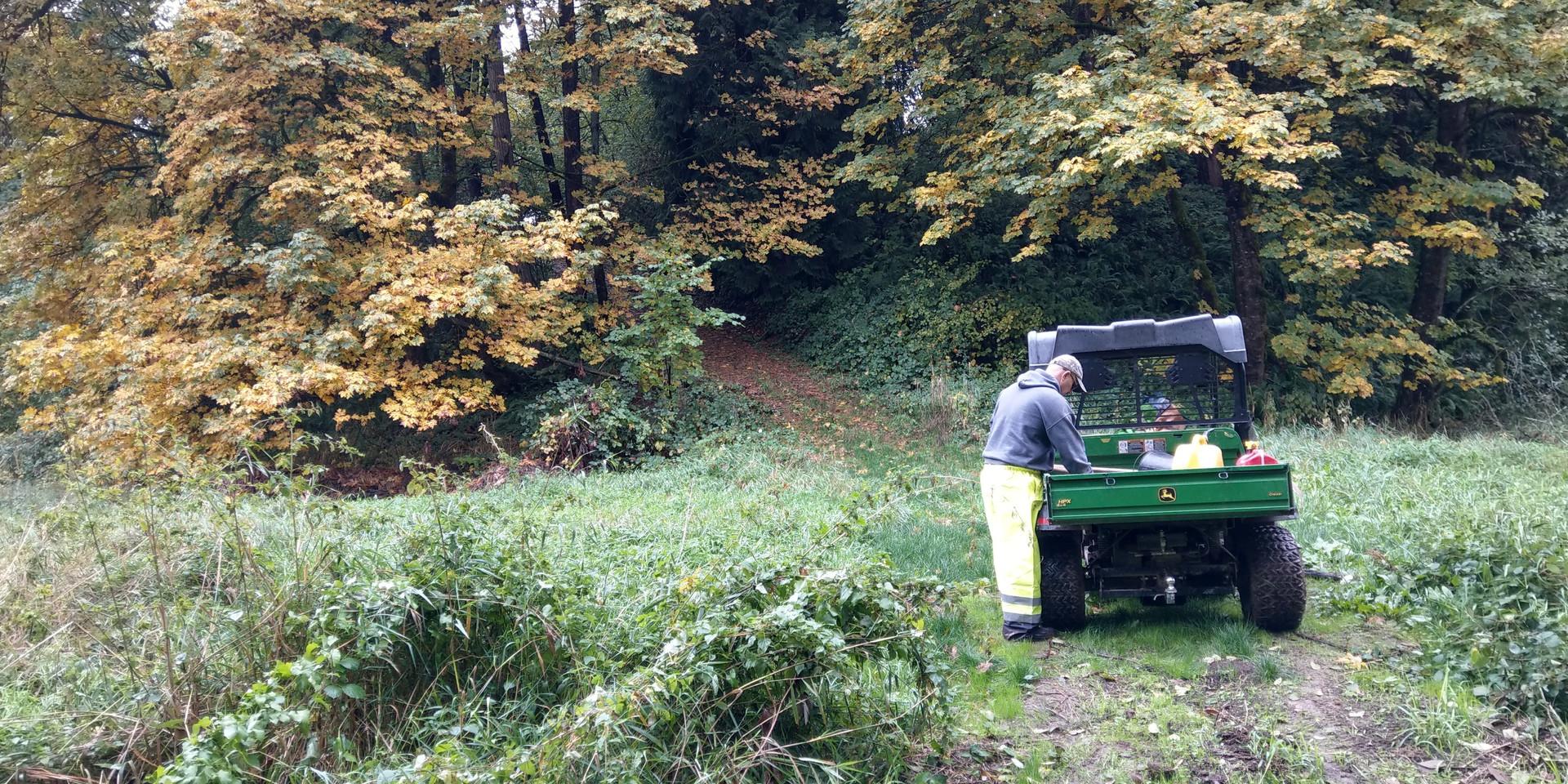 Reg plotting Spring work in The Forest