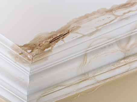 Protect Your Property From Water Damage