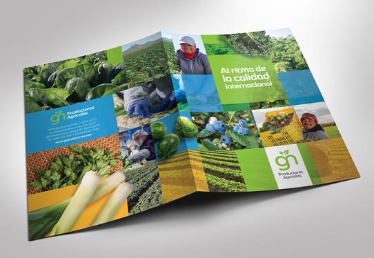 """Folder de ventas para campaña """"Ritmo"""" / Grupo Navarro Productores Agrícolas"""