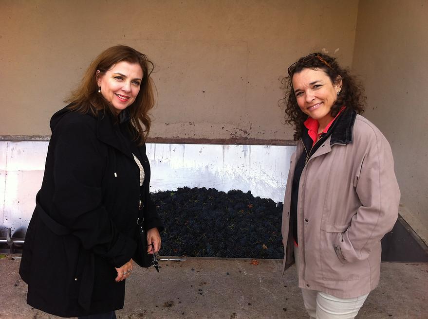 Plena molienda en La Rioja