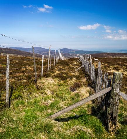 Cairn O'Mount