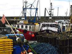 Gourdon Harbour, Aberdeenshire