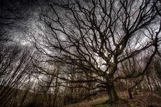 Malvern Hills, Worcestershire