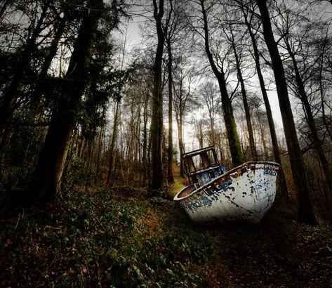 Boat in Wood