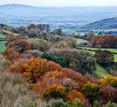Painswick Beacon, Gloucestershire