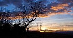 Leckhampton Hill, Gloucestershire