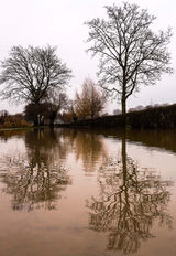 Reflections in the lane from the flooded River Avon at Evesham, Worcestershire.
