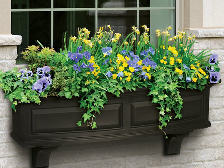 10 Stunning Window Box Ideas to Dress Up Your Home Year-Round