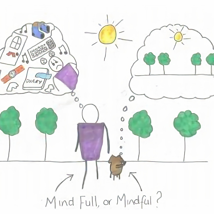 Middle School Youth Workshop:  Stress Reduction with Mindfulness