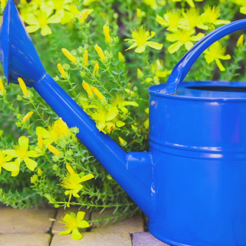 Volunteer - Intergenerational Gardening! (4)