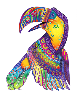 Oaxacan Toucan
