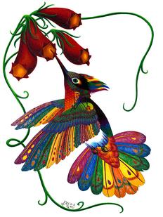 Oaxacan Hummingbird