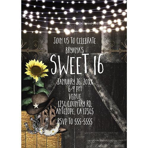 Rustic Country Barn Yard Birthday Party Invitations