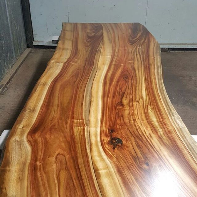Camphor timber slab dinning table