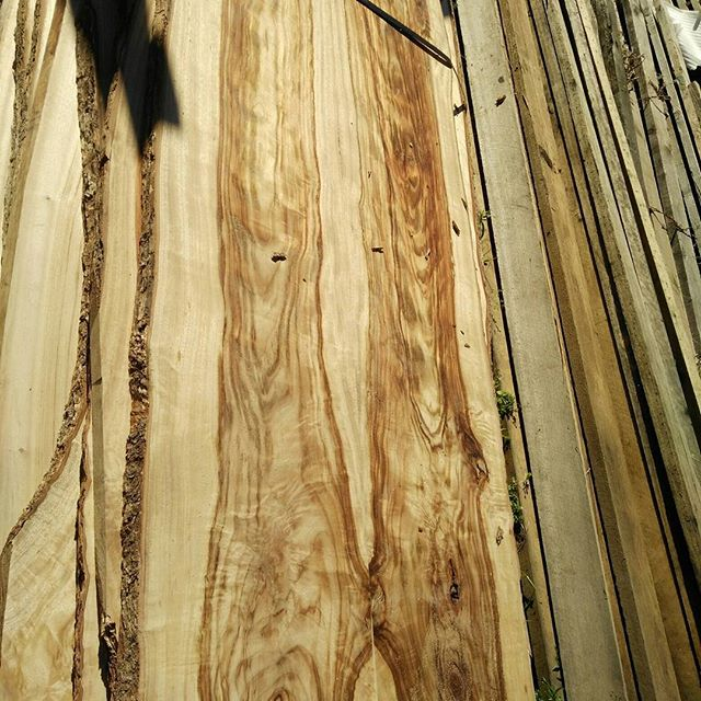 Some beautiful timbers at Go Natural Timbers _#timberslabs #timber #camphor