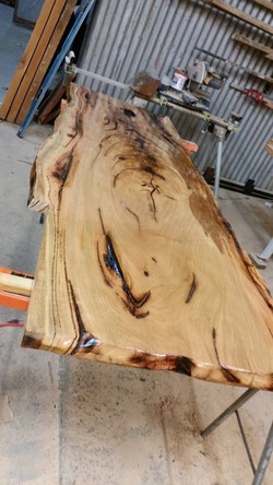 Spotted Gum coated.jpg