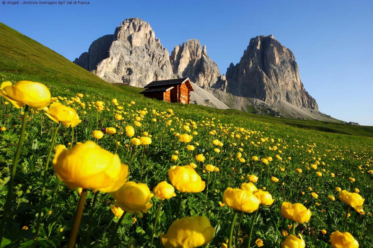 Paesaggio-montano-della-Val-di-Fassa-in-estate