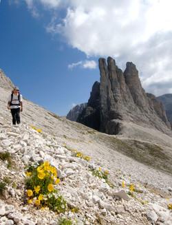 Splendide Dolomiti