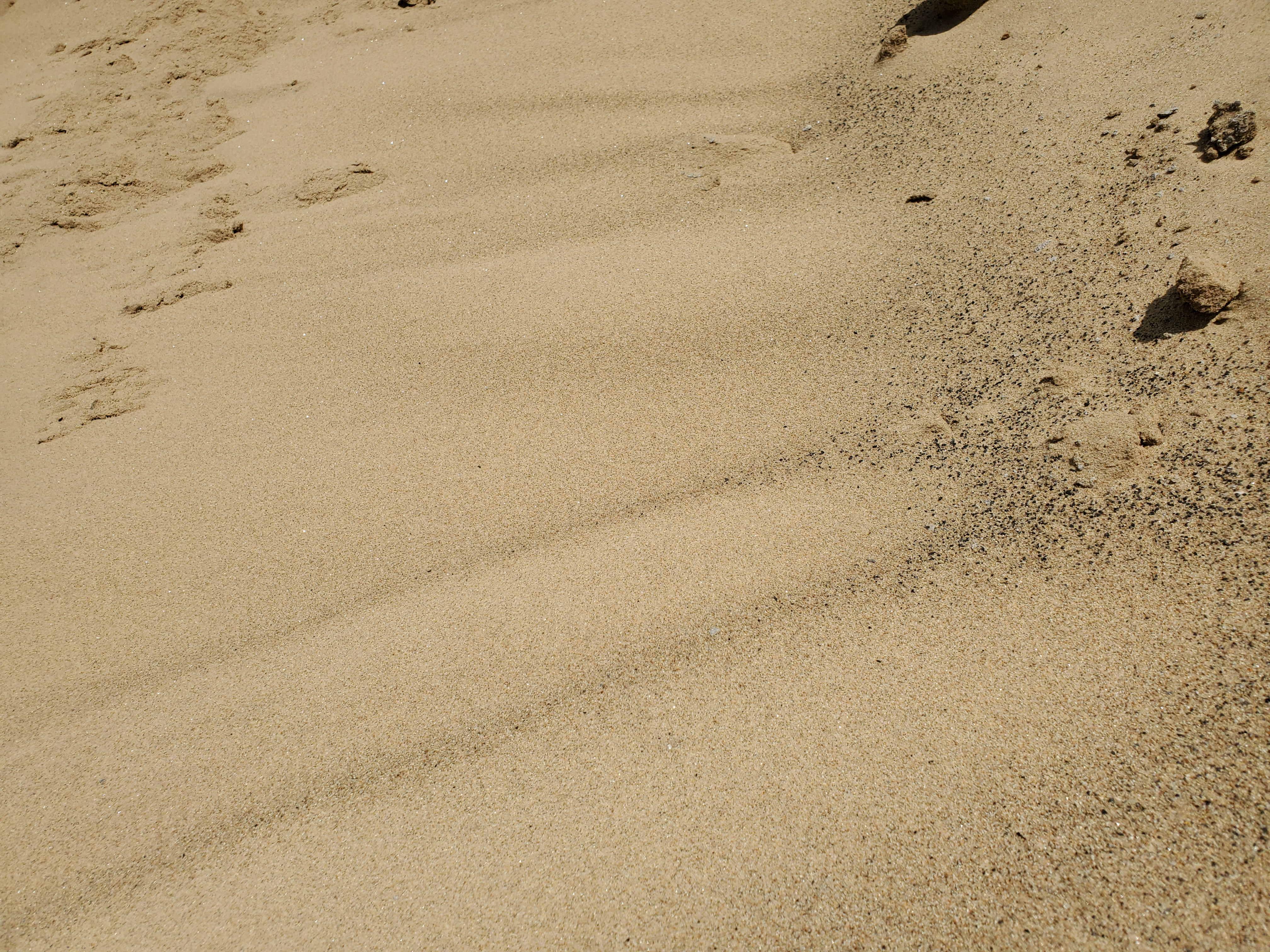 Mason Sand - Fine