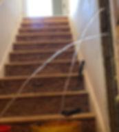 basement leak.jpg
