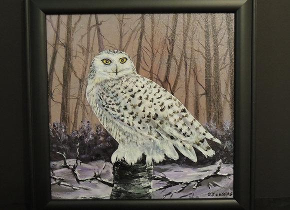 Shirley Kinneberg - Snowy Owl Alert