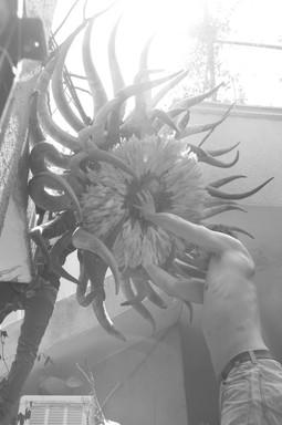 Arnold_Grojean_Adama_Sow_Sculpture-30.jp