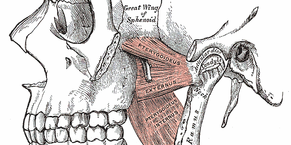 Craniosacral Therapy and Intraoral Massage for TMJ Dysfunction