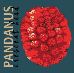 PANDANAS