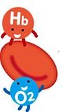 deoxygenated hemoglobin
