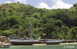 L'Ile de la Tortue (Tortuga Island)