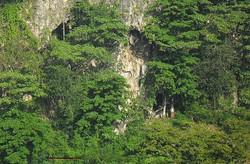 Grotte Marc Antoine