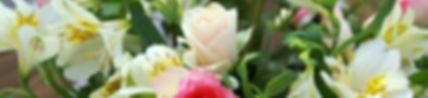 Eliminar etylen y preenfriado de flores