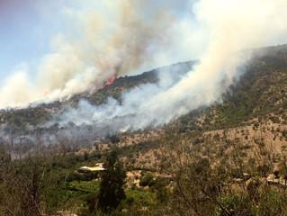 Fire in Quebrada Escobares, Central Chile