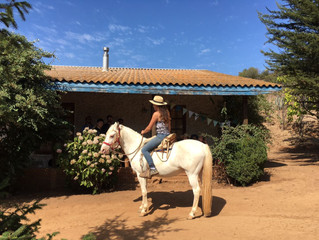 Learn how to ride a horse - daytrip on campesano