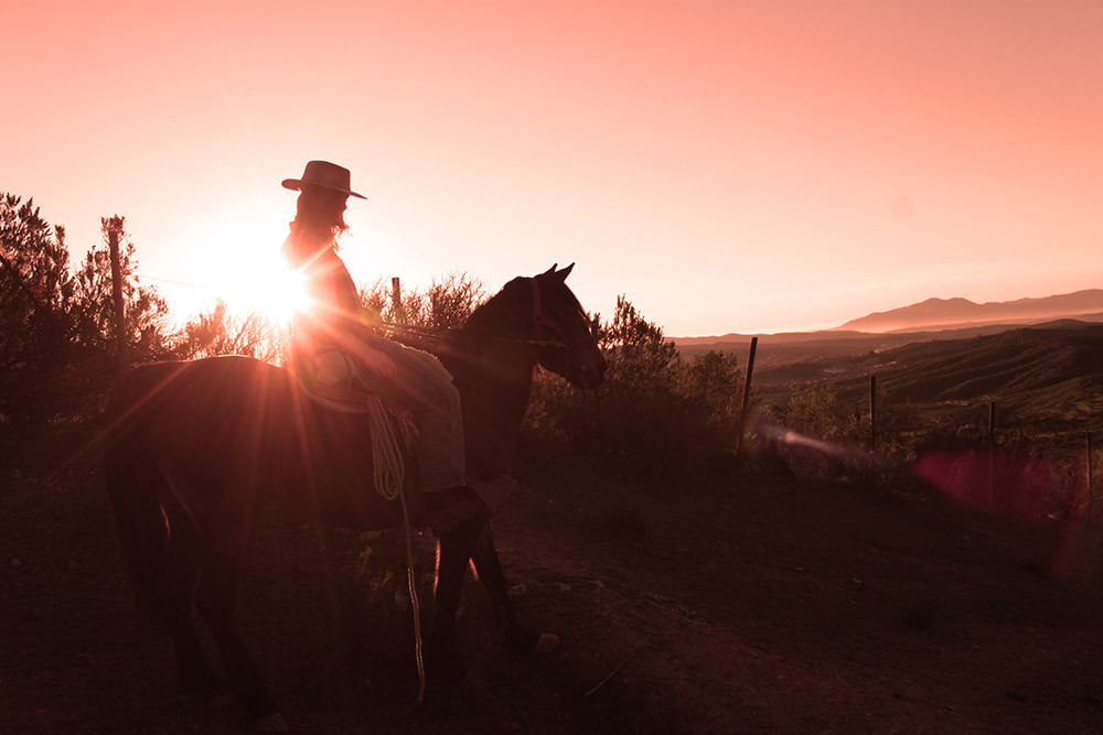 horseback ride with red sun