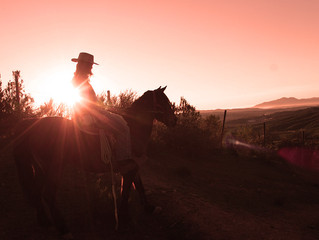 4,5 hours horseback ride with the most beautiful sunset we have ever seen