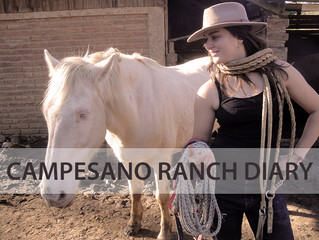 CAMPESANO RANCH DIARY