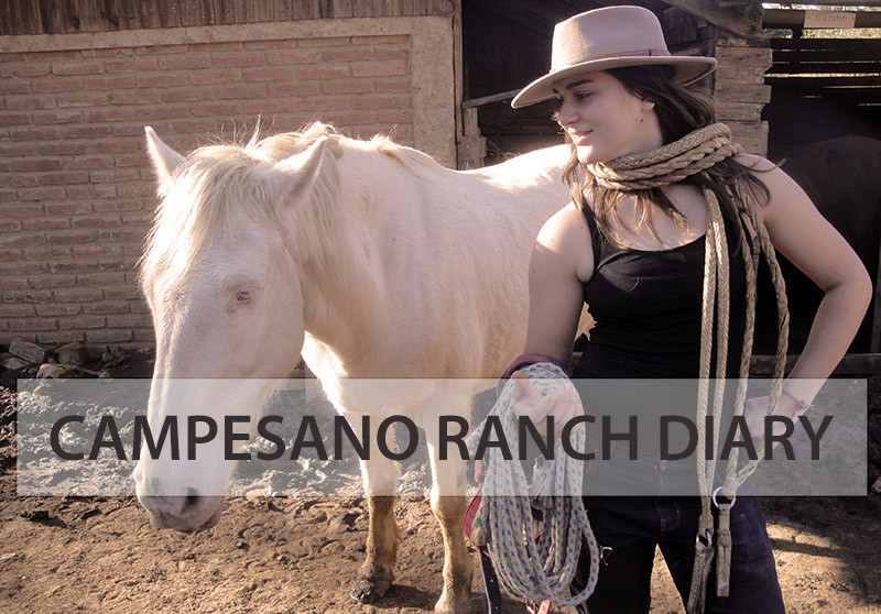 Life on a horse ranch in Chile