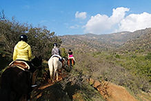 horsebackriding_top.jpg