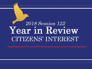 Year in Review - Citizens' Interest