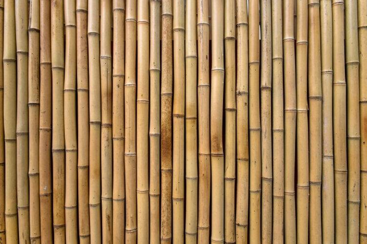 bamboo-texture_1136-248.jpg