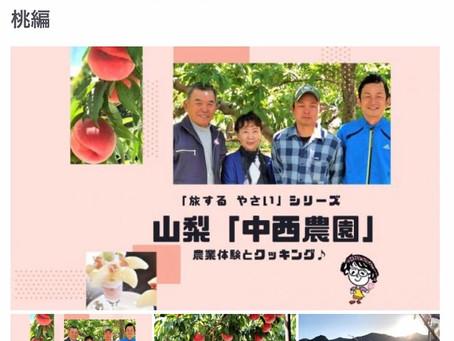 『中西農園×HIS』オンラインツアーのご案内