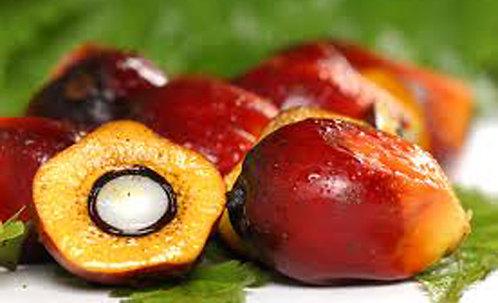 Palmu oil / Palmu eļļa