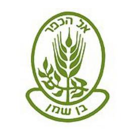 כפר הנוער בן שמן