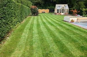 IMG_4752 - Sturt Garden.JPG